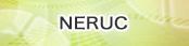NERUC